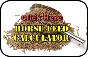 horses feed calculator